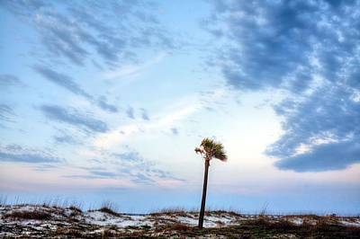 Photograph - Alone In Gulf Shores by JC Findley