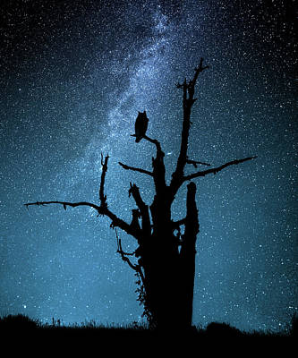 Milky Way Wall Art - Photograph - Alone In The Dark by Manu Allicot