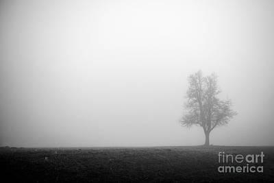 Alone In The Fog - Bw Art Print by Hannes Cmarits