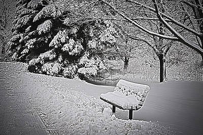 Art Print featuring the photograph Alone In The Park.... by Deborah Klubertanz