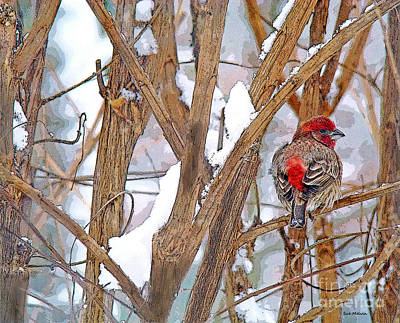 Photograph - Alone In The Snow Storm by Sue Melvin