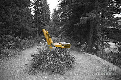 Wall Art - Photograph - Alone In The Wilderness by Christine Mlynarchuk