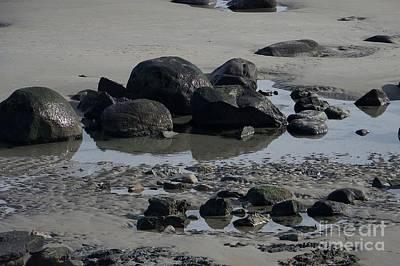 Along A Maine Beach Print by Eunice Miller