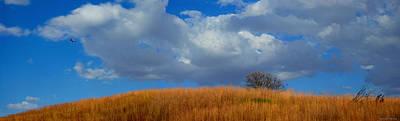 Photograph - Along Big Bluestem Ridge by Bruce Morrison