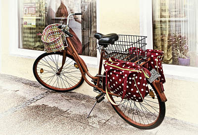 Bicycle Photograph - Along For The Ride by Marcia Colelli