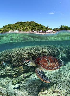 Philippines Photograph - Along Shore by Andrey Narchuk
