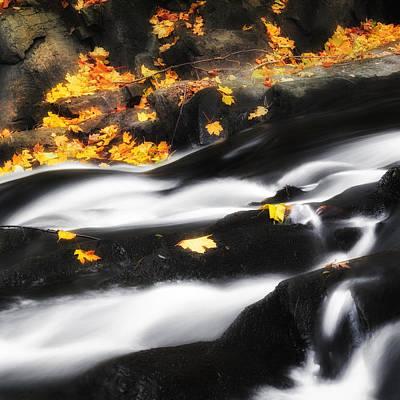 Along The Autumn Stream Square Art Print