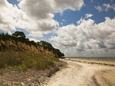 St. Simons Island Photograph - Along The Beach by Barbara Northrup