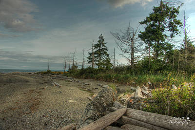 Vancouver Island Photograph - Along The Beach by Dorothy Hilde