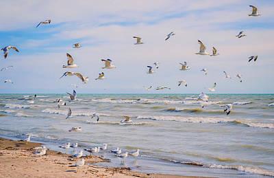 Photograph - Along The Beach by Garvin Hunter