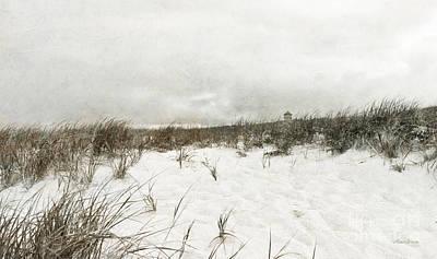Along The Cape Cod National Seashore Art Print