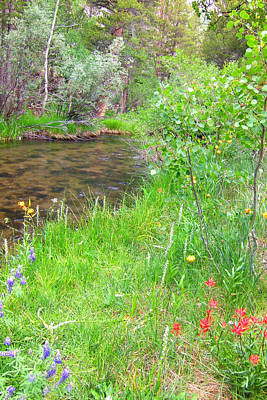 Art Print featuring the photograph Along The Creek by Marilyn Diaz