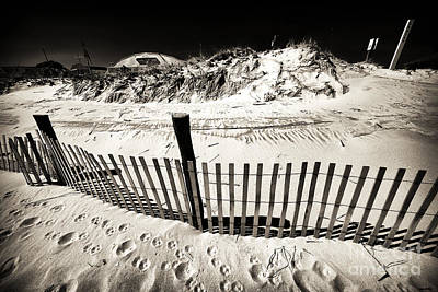 Along The Lbi Dune Fence Art Print