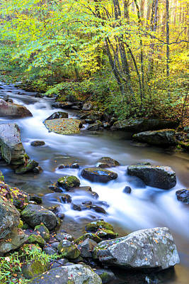 Vertical Photograph - Along The Oconaluftee River by Andres Leon
