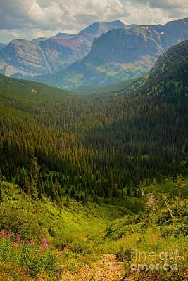 Along The Path To Iceburg Lake 19 Art Print by Natural Focal Point Photography
