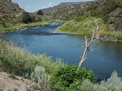 Photograph - Along The Rio Grande River by Lucinda Walter