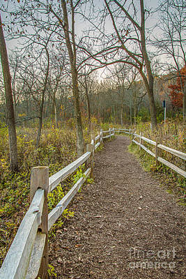 Along The Wehr Path Art Print by Andrew Slater