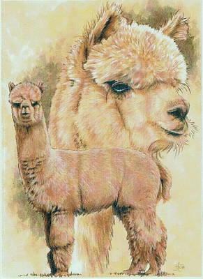 Alpaca Painting - Alpaca by Barbara Keith