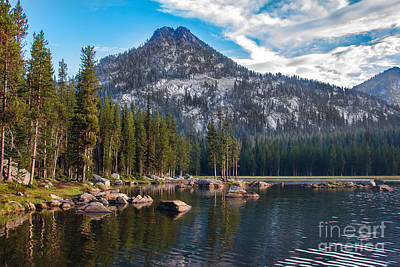 Photograph - Alpine Beauty by Robert Bales