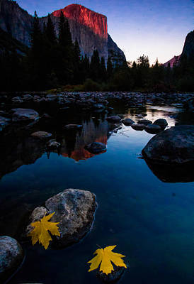 Wall Art - Photograph - Alpine Glow El Capitan by William Sanger