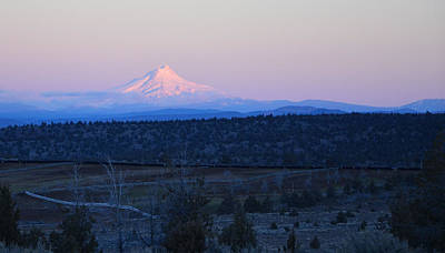Photograph - Alpine Glow On Mt. Hood by Linda Larson