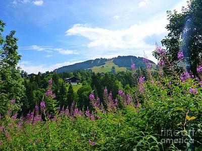 Photograph - Alpine Landscape by Cristina Stefan