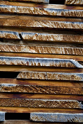 Natural Abstract Photograph - Alpine Lumber by Frank Tschakert