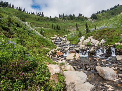 Photograph - Alpine Meadow Cascades - Mt. Rainier by Patti Deters