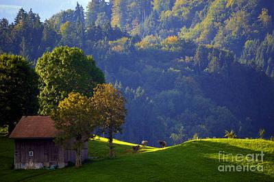 Photograph - Alpine Summer Scene In Switzerland by Susanne Van Hulst
