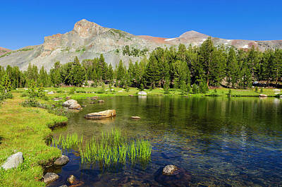 Alpine Tarn In Dana Meadows Under Mount Art Print