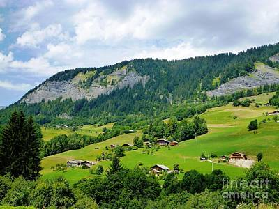 Photograph - Alpine View by Cristina Stefan