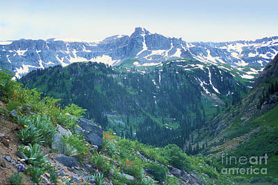 Alpine Vista Near Durango Art Print by Teri Brown