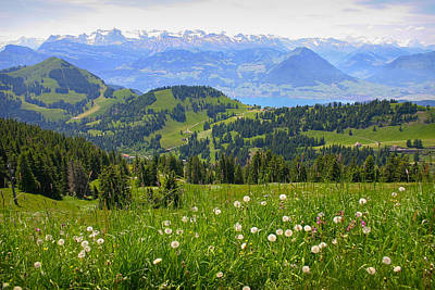 Photograph - Alps From The Rigi by Jenny Setchell
