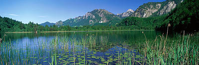 Neuschwanstein Castle Photograph - Alpsee Bavaria Germany by Panoramic Images