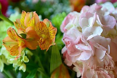 Flowers Photograph - Alstroemeria And Hydrangea by Olga Hamilton