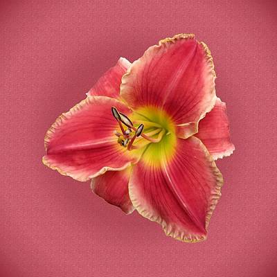 Photograph - Altered State Daylily by MTBobbins Photography