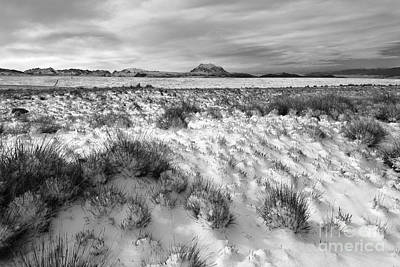 Wintry Landscape Photograph - Altiplano And Mt Illimani In Winter by James Brunker