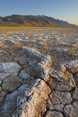 Alvord Desert Wall Art - Photograph - Alvord Desert Oregon by Alan Majchrowicz
