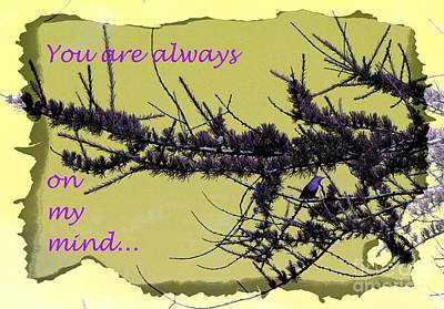 Hearts On Trees Digital Art - Always On My Mind - Greeting Card - Missing You  by Barbara Griffin
