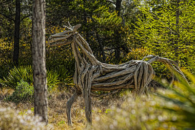 Photograph - Alys Beach Driftwood Horse by Frank Feliciano