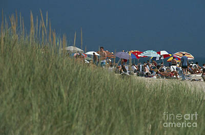 Amagansett Beach Long Island Usa Art Print by Ros Drinkwater