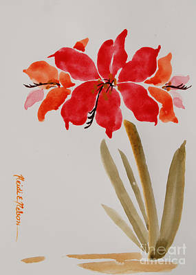 Amaryllis Watercolor Painting - Amaryllis II by Heidi E  Nelson
