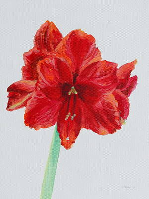 Painting - Amaryllis by Michele Myers
