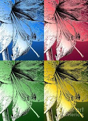 Drawing - Amaryllis Pop Art by J McCombie