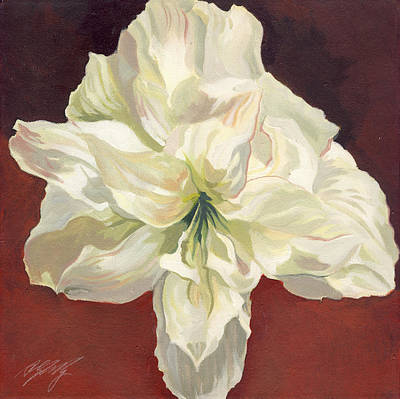 Amaryllis With Red Art Print by Alfred Ng