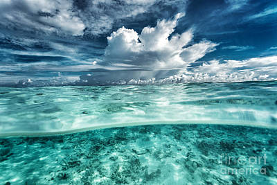 Photograph - Amazing Seascape by Anna Om