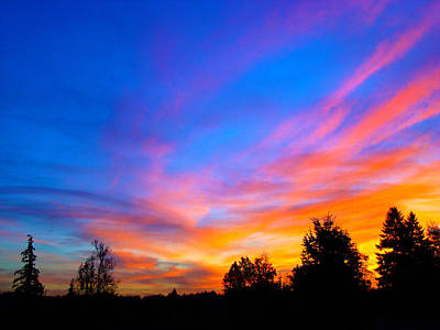 Photograph - Amazing Sunset by Lisa Rose Musselwhite