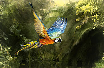 Art Print featuring the photograph Amazon Beauty by Brian Tarr