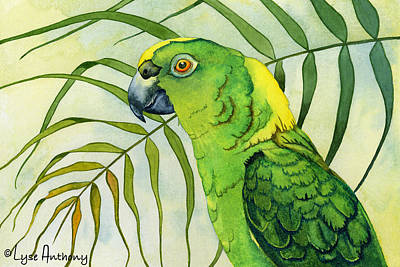 Macaw Painting - Amazon by Lyse Anthony