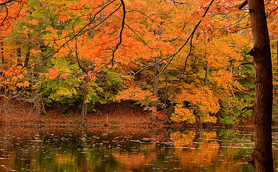 Reds Of Autumn Photograph - Amber Afternoon by Lourry Legarde